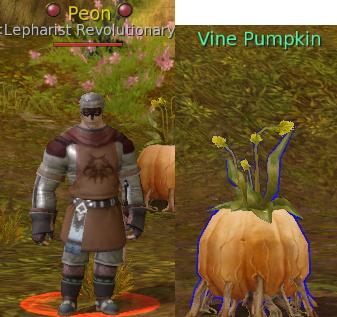 Peon and Vine Pumpkin