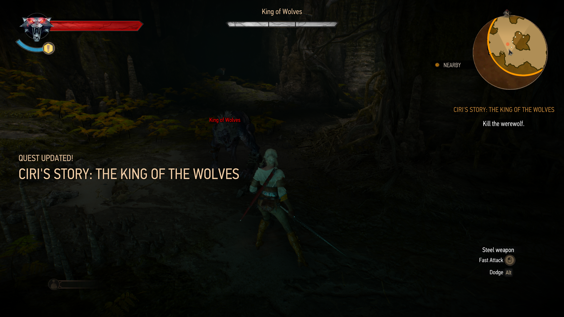 Ciri vs King of Wolves